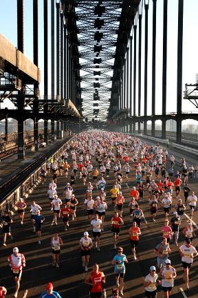 127030-sydney-running-festival_Cameron richardson 2